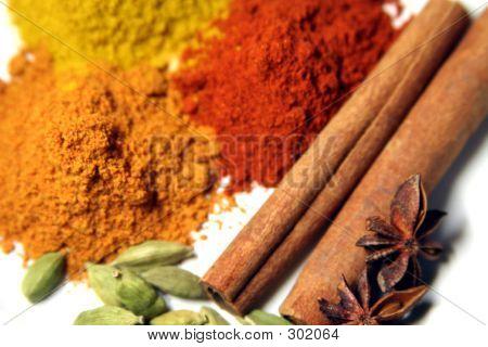 Spice Colors