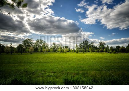 poster of Vibrant landscape with green meadows, trees, blue sky and white clouds in the background with countr