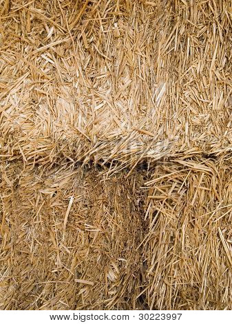 Hay Bale Closeup