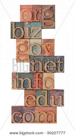 collage of popular internet domain extensions (org, biz, gov, net, info, edu, com) - vintage wooden letterpress printing blocks, stained by color inks, isolated on white