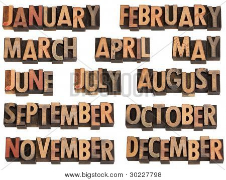 12 months of the year from January to December in vintage wood letterpress printing blocks, isolated on white