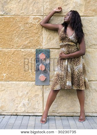 Fashion - Woman _ Leopard Print Dress