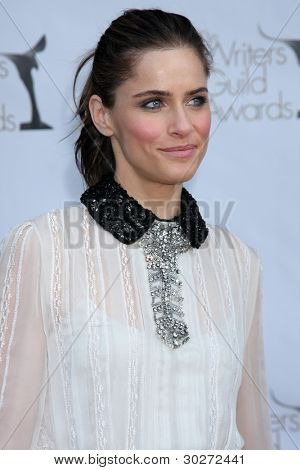 LOS ANGELES - FEB 19:  Amanda Peet arrives at the 2012 Writers Guild Awards at the Hollywood Palladium on February 19, 2012 in Los Angeles, CA.