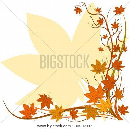 Fall Background, Autumn Leaf