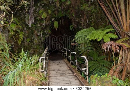 Thurston Lava Tube, Hawaii