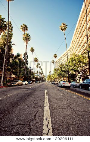 Palm streets of Beverly Hills