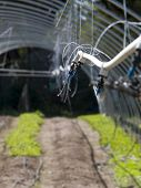 foto of waterspout  - A line of waterspouts for irrigating an organic farm - JPG