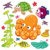 pic of sea life  - Cute Sea Life - JPG