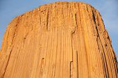 picture of porphyry  - Close up of the top of Devils Tower in Wyoming - JPG