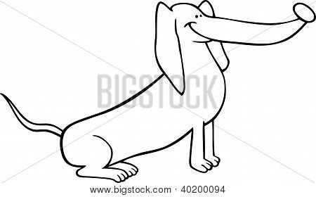 Dachshund Dog Cartoon For Coloring