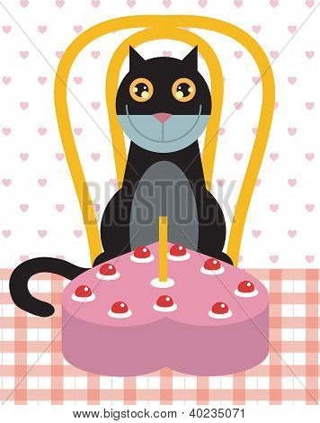Cat's birthday celebration