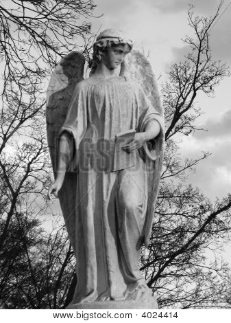 Cemetery In Brooklyn - Angel Statue- Black & White