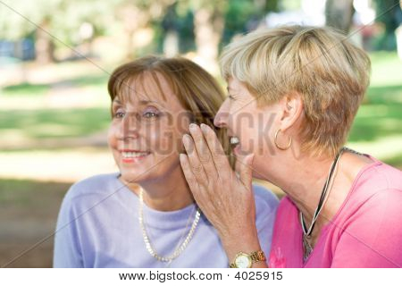 Senior femenino Gossip