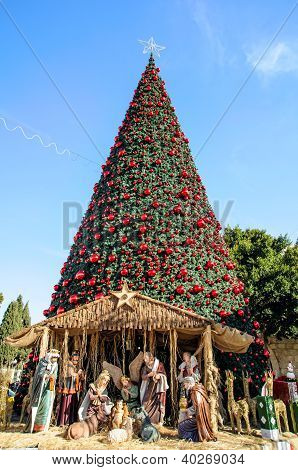 Christmas tree in Bethlehem, Palestine