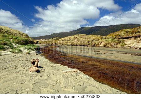 Coastal Stream Through A Sandy Beach