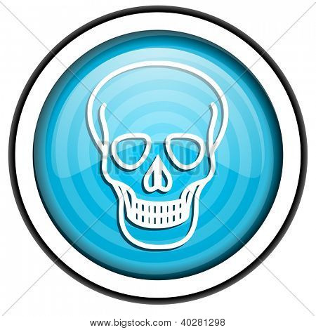 skull blue glossy icon isolated on white background