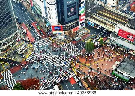TOKYO - DECEMBER 15: Shibuya Crossing December 15, 2012 in Tokyo, JP. The crossing is one of the world's most well known examples of a scramble crosswalk.
