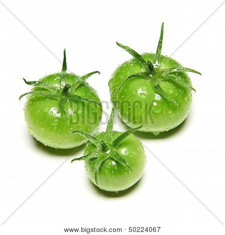Immature green tomatoes