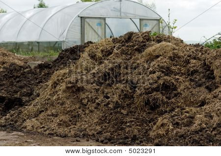 Compost Heap And Polytunnel