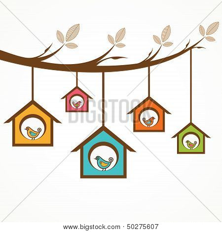 Collection of funny birds in feeders hanging by a branch