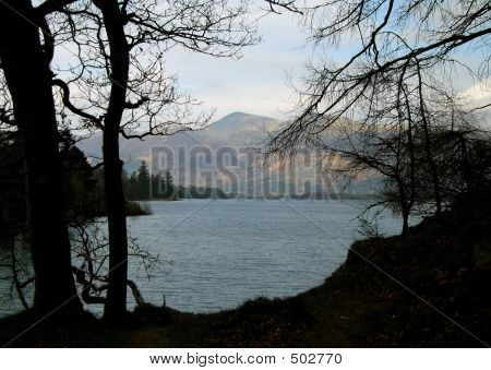 Derwent Water Through Trees