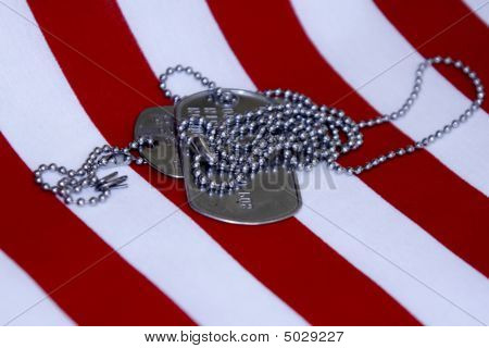 Silver Dog Tags On Stripes