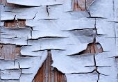stock photo of derelict  - Peeling paint with many cracks on wood background - JPG