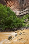 stock photo of upstream  - Big Bend and Virgin River Zion National Park Utah
