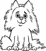stock photo of pomeranian  - Black and White Cartoon Illustration of Cute Shaggy Purebred Pomeranian Dog for Children to Coloring Book - JPG