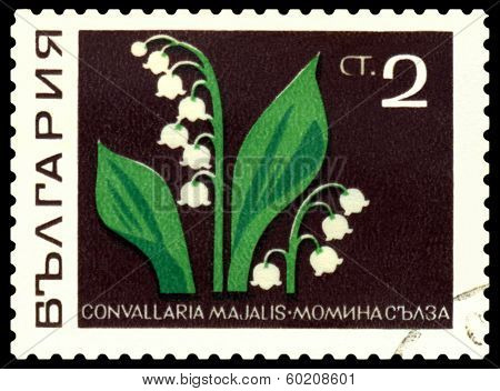 Vintage  Postage Stamp. Flower Li Ly - Of - The - Valley.