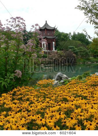 Chinese Pavilion And Blackeyed Susan Flowers