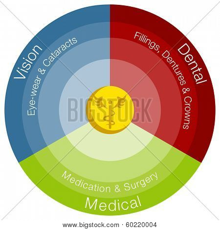 An image of a healthcare categories chart.