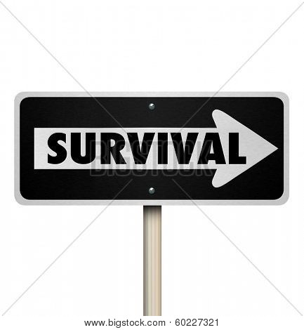 Survival Word One Way Arrow Sign Endurance Resilience