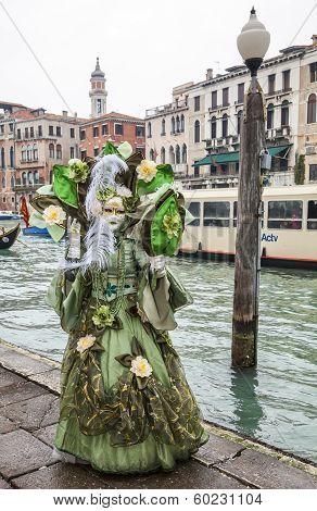 Complex Green Venetian Disguise