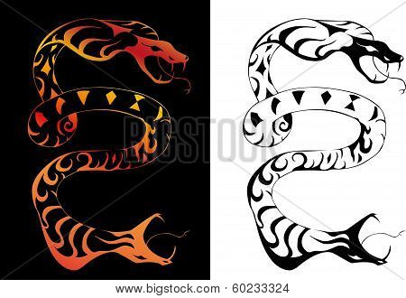 Vector illustration of two headed snake