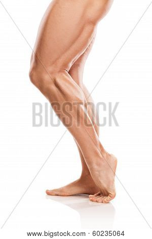 Strong Athletic Man Fitness Model Torso Showing Naked Muscular Legs