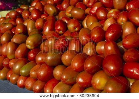 Asian best tomato