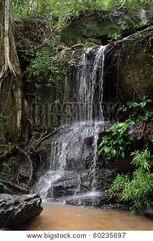 Waterfall In The Jungle