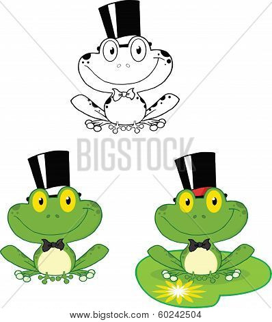 Smiling Groom Frog Cartoon Character. Set Collection