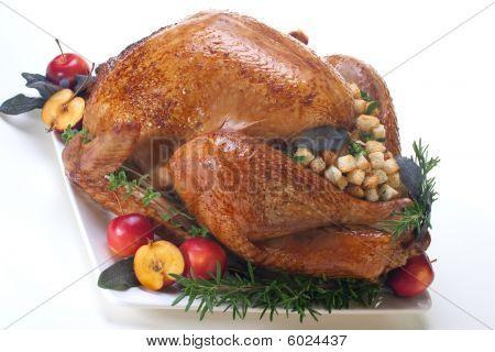 Turkey Türkei Urlaub auf weiß