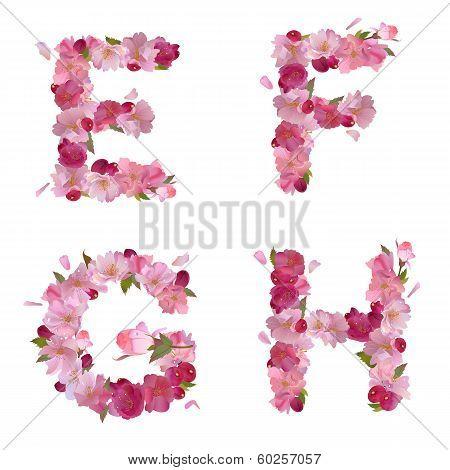 Spring alphabet with cherry flowers EFGH