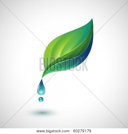 Green leaf with water drop, eps10 vector