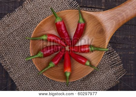 Red Pepper Paprika In A Wooden Spoon.