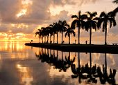 picture of florida-orange  - Sunrise at Cutler Bay near Miami - JPG