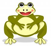 picture of fat lip  - Illustration of a beautiful fat frog sitting front view - JPG
