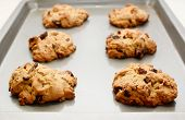 stock photo of pecan  - Six pecan and chocolate chip cookies fresh from the oven - JPG