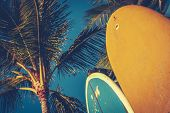stock photo of  photo  - Retro Style Photo Of Surf Boards And Palm Trees - JPG