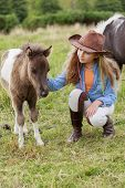 stock photo of pony  - Little foal  - JPG