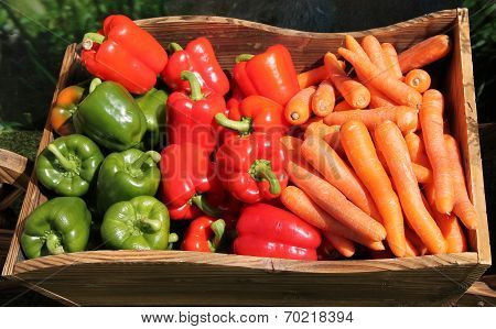 Peppers and Carrots.