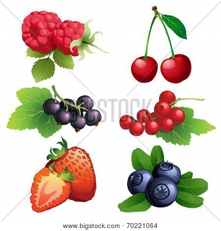 Ripe Strawberry, Raspberry, Cherry, Blackberry